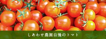 しあわせ農園自慢のトマト