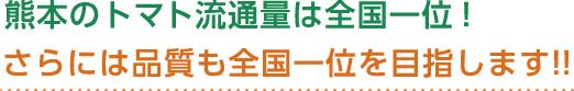 熊本のトマト流通量は全国一位!さらには品質も全国一位を目指します!!