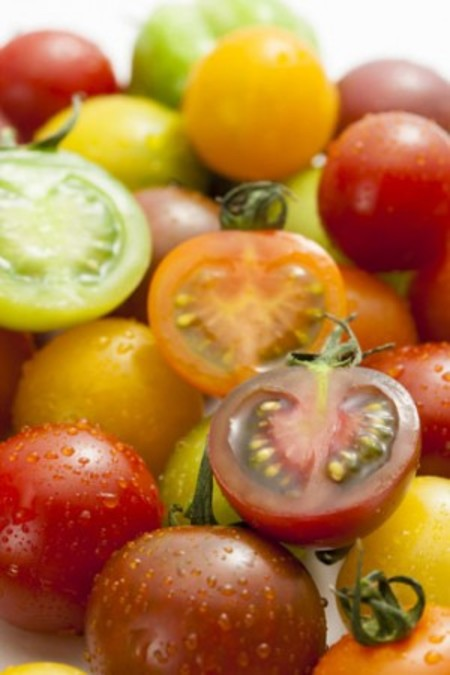 カラフルミニトマトの詰合せ 800g