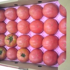 昔ながらのトマト 4kg 大分県産