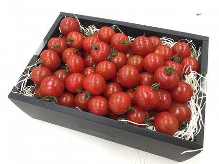 デリシャスミニトマト(サンチェリー) 800g